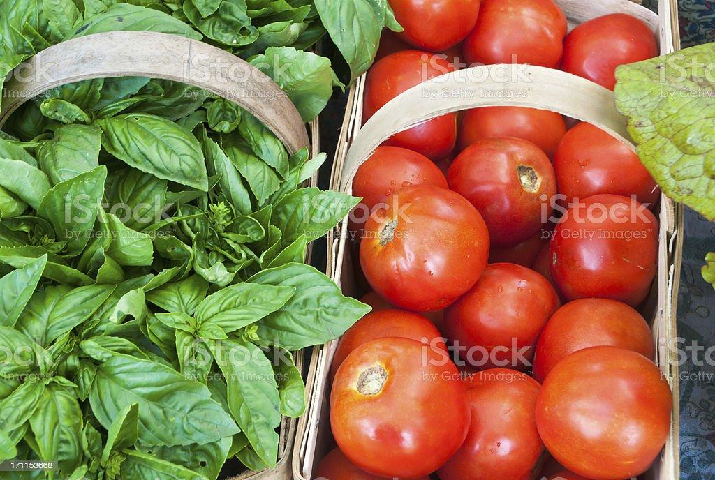Tomatoes and Basil royalty-free stock photo