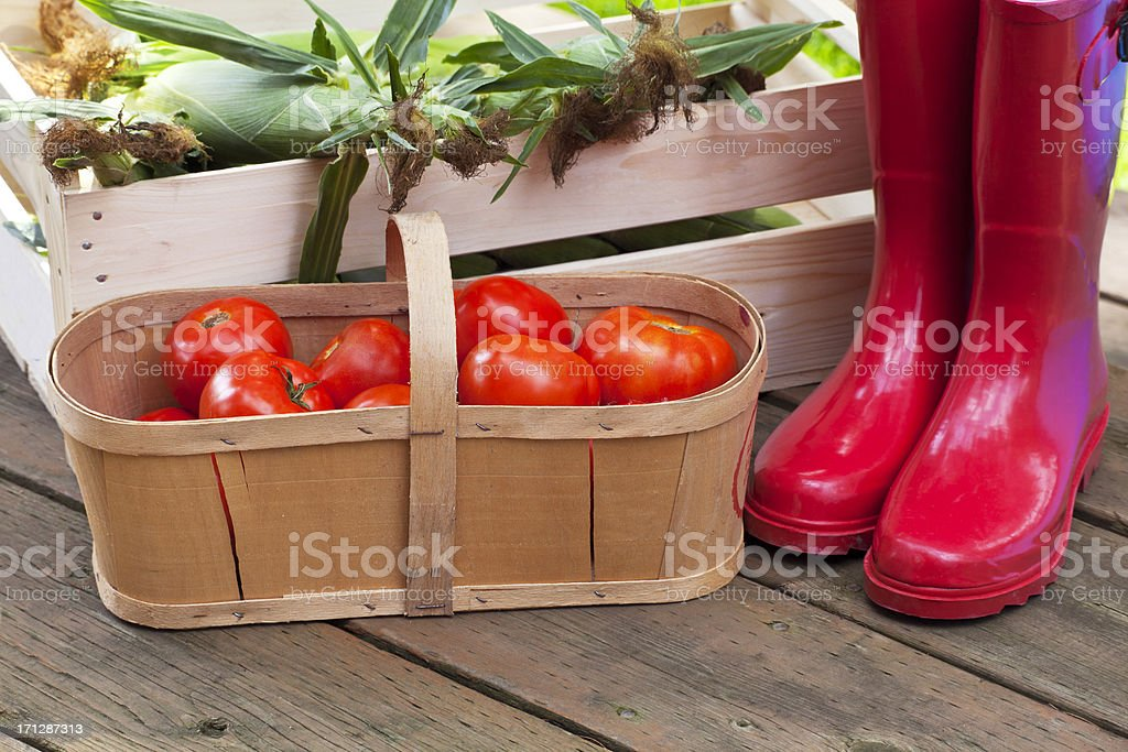 Tomatoes and Corn with Red Boots stock photo