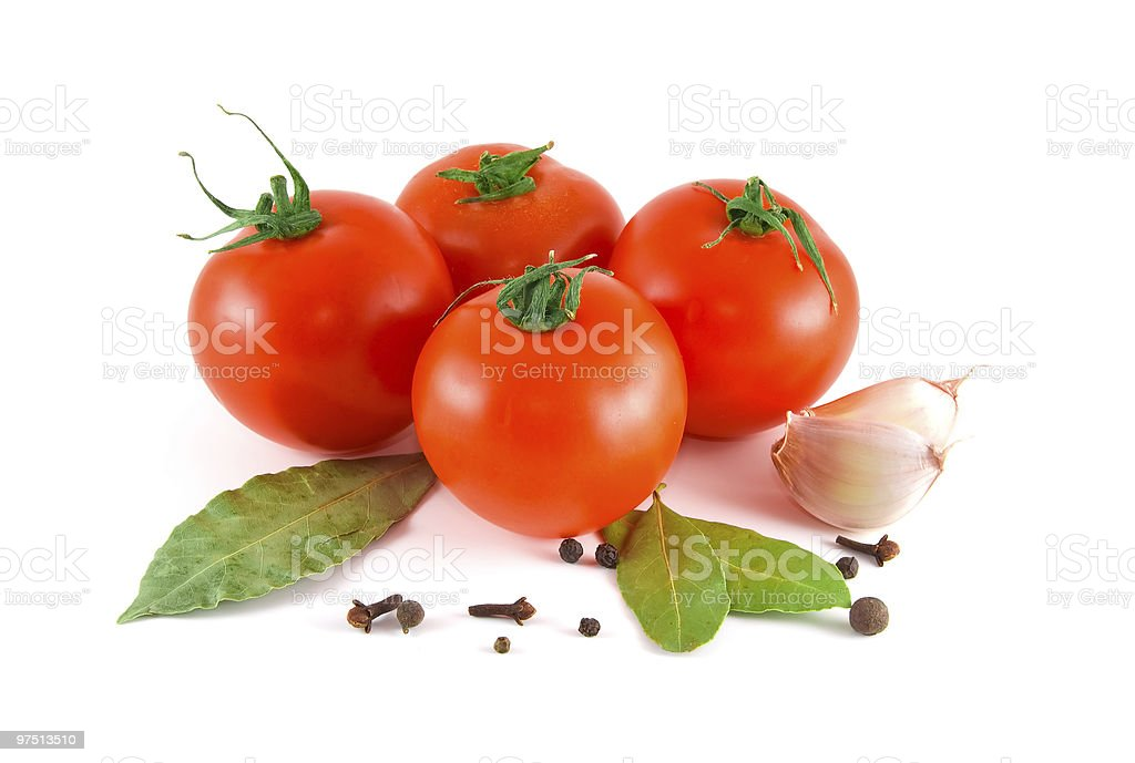 Tomatoes and spices royalty-free stock photo