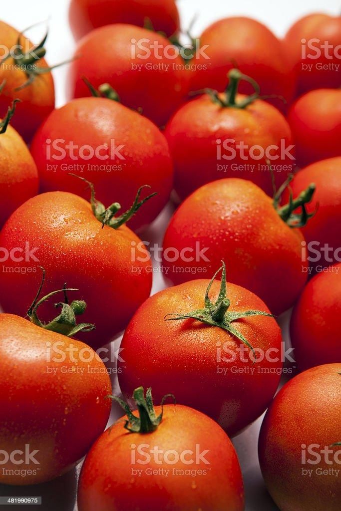 Tomaten-Hintergrund – Foto