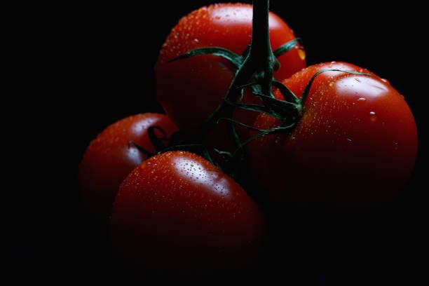 暗い背景に光のビームで閉じるトマト ストックフォト