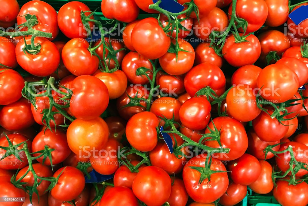 Tomatoes in a supermarket stock photo