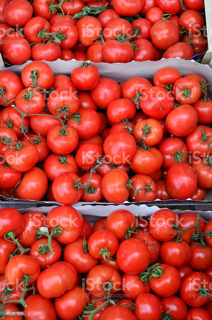 Tomatoes in cardboard crates stock photo