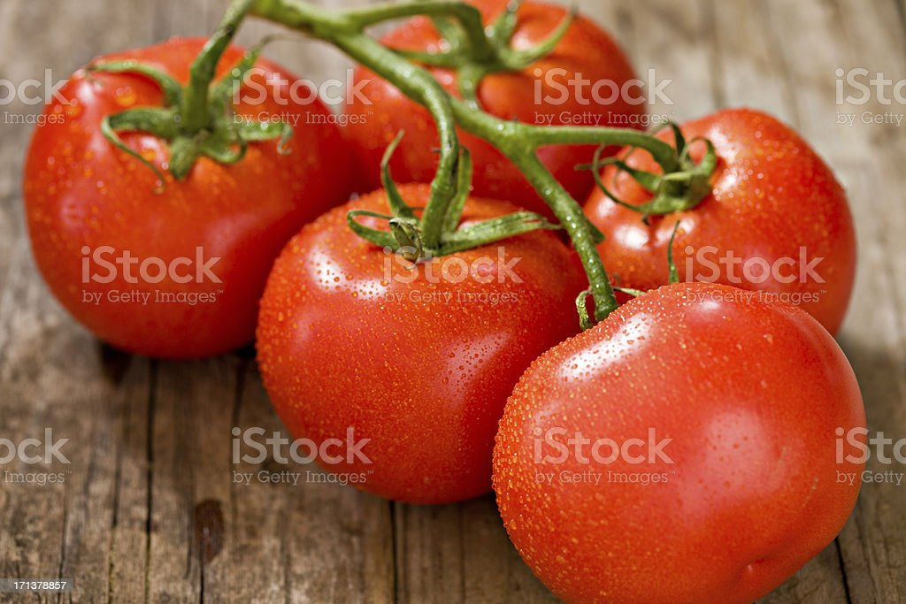 Tomatoes On A Vine royalty-free stock photo
