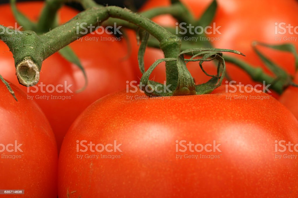 Tomatoes On Black royalty-free stock photo