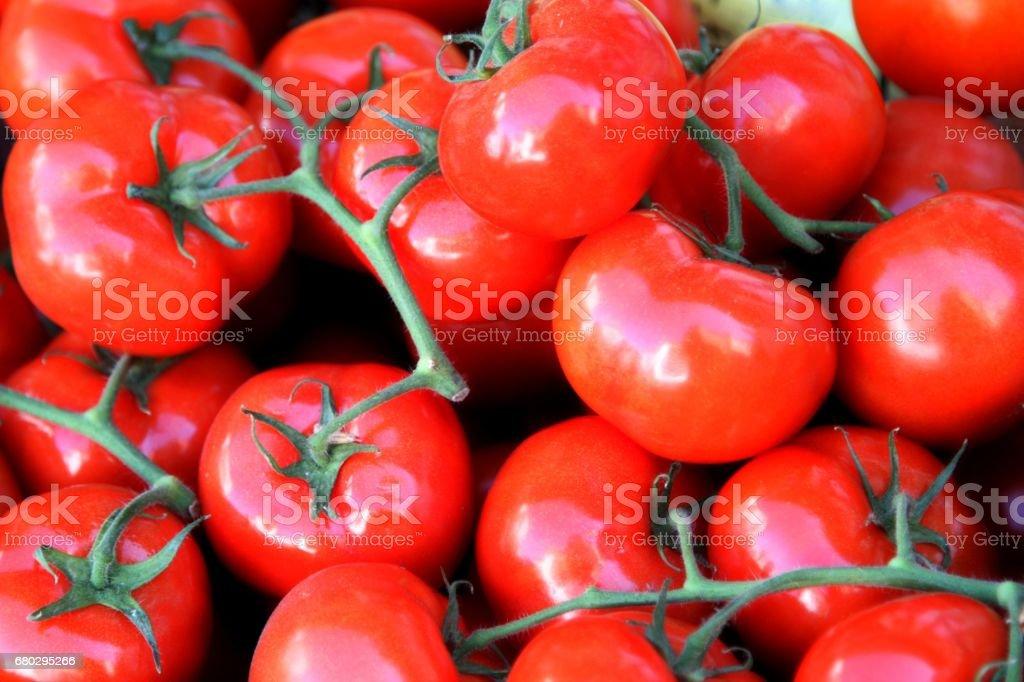 Tomates en vine - foto de stock