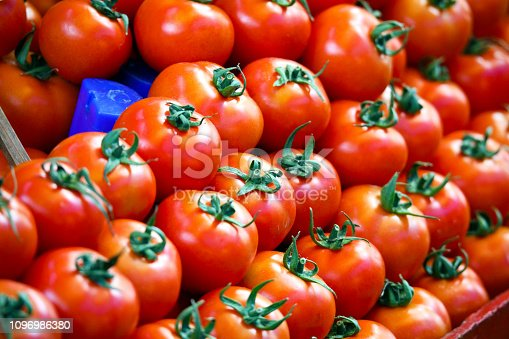 Background of tomatoes in a row
