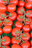 Close up of tomatoes on the weekend market