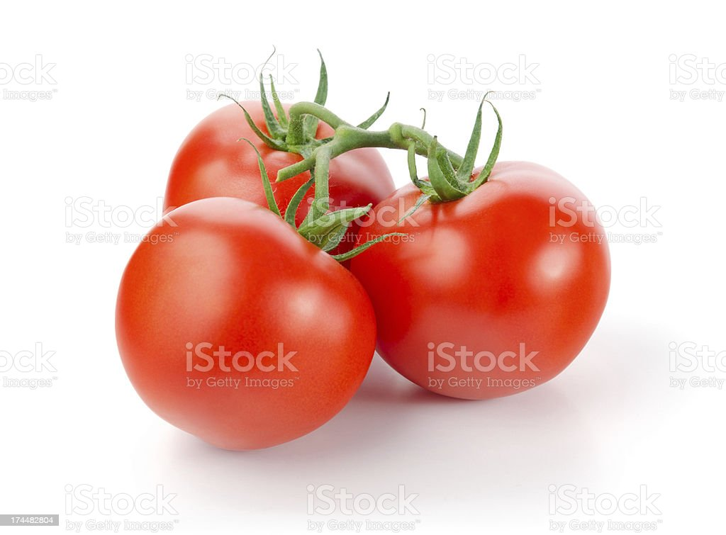 Tomates - foto de stock