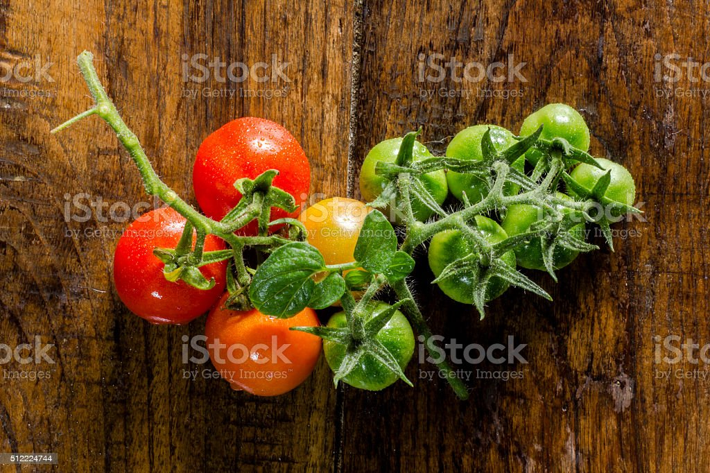 Tomates stock photo