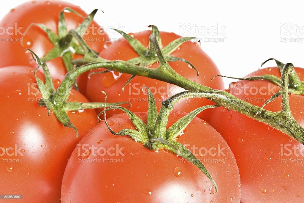 トマト ロイヤリティフリーストックフォト