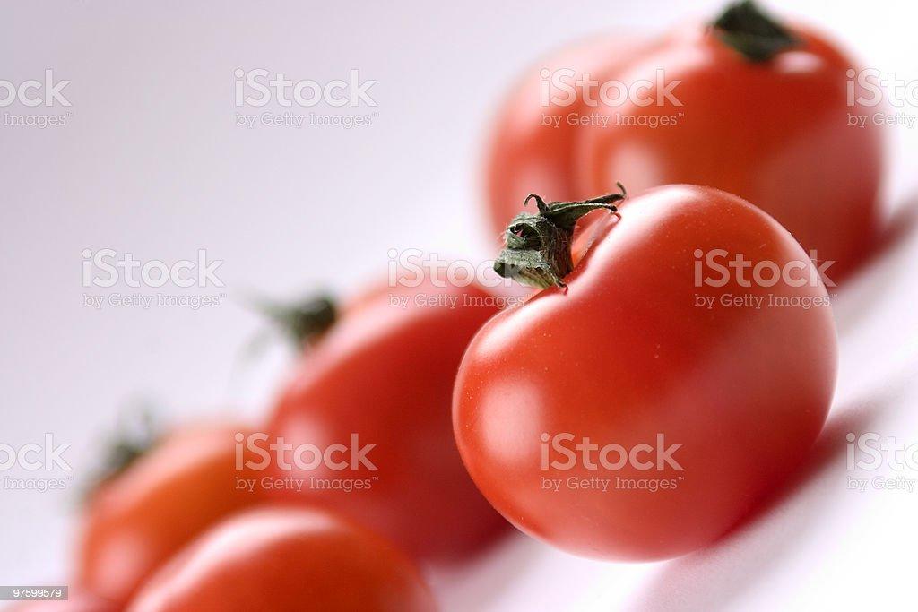Tomatoes royaltyfri bildbanksbilder