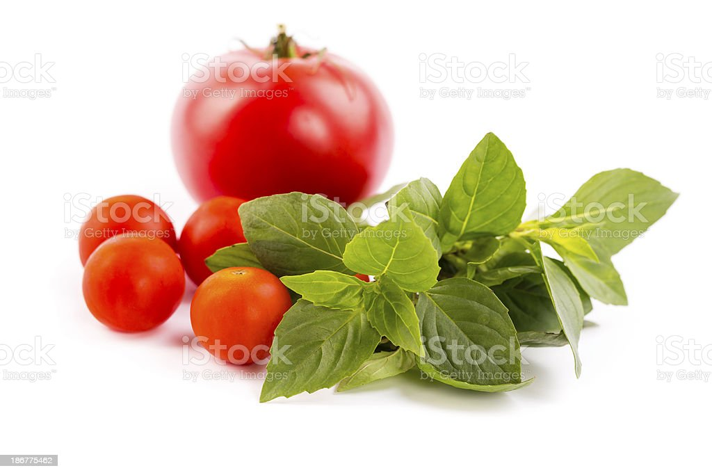 tomatoes with basil royalty-free stock photo