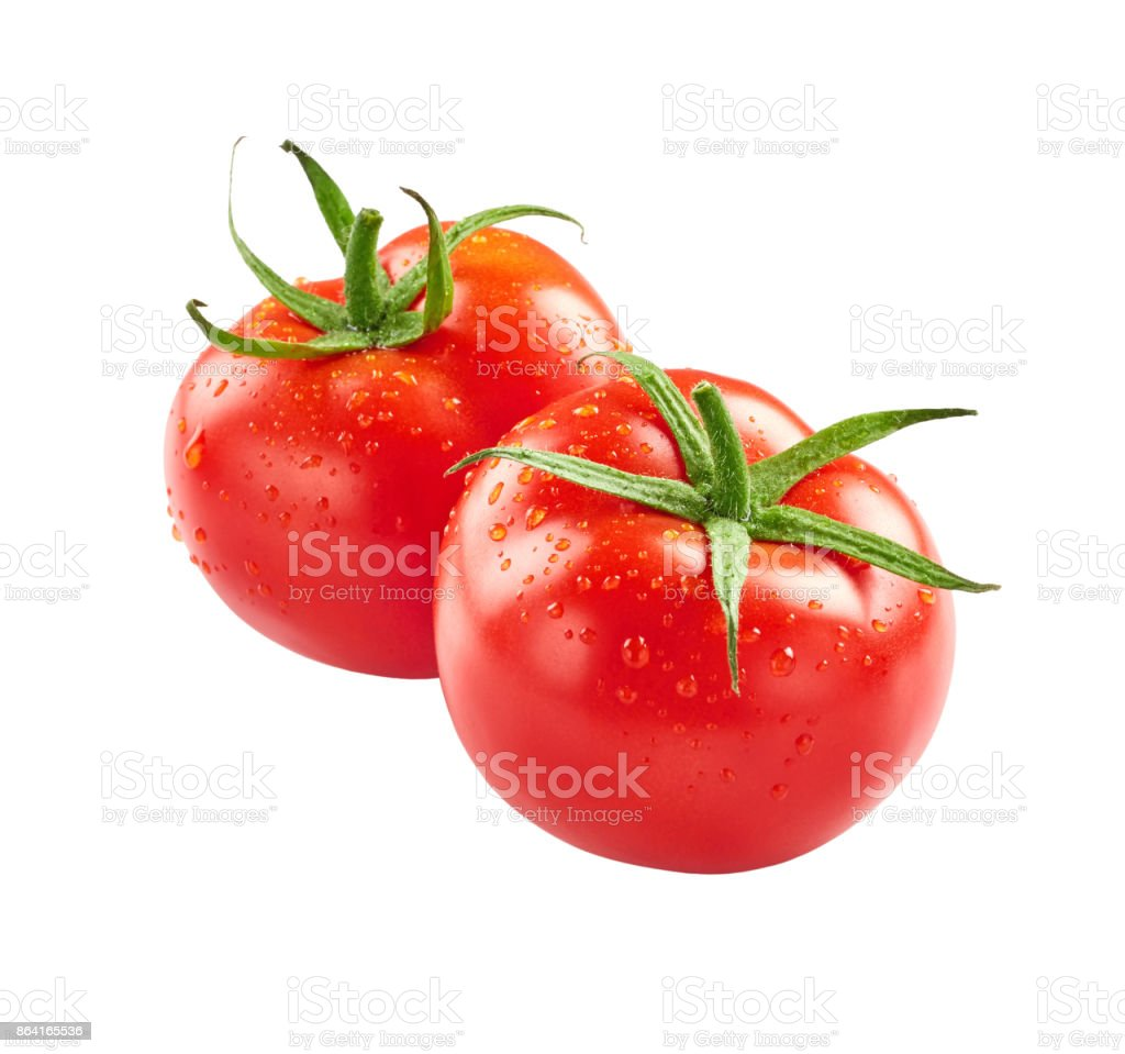 Tomatoes with drops of water royalty-free stock photo