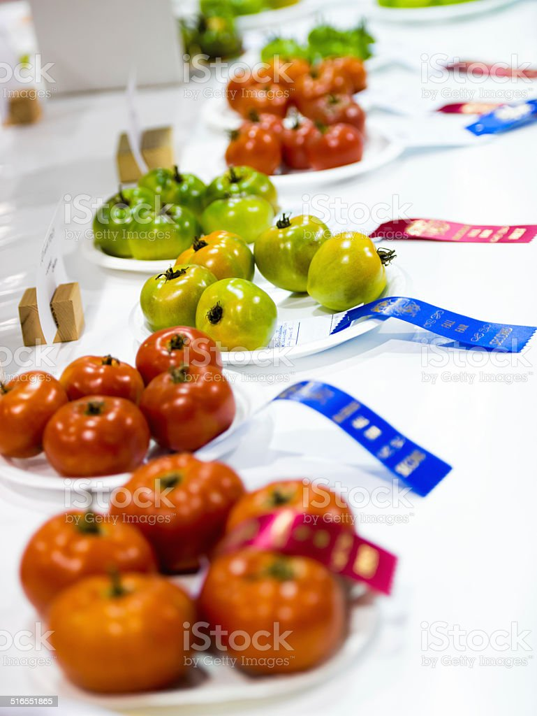 Tomatoes with Ribbons at an Agricultural Competition stock photo