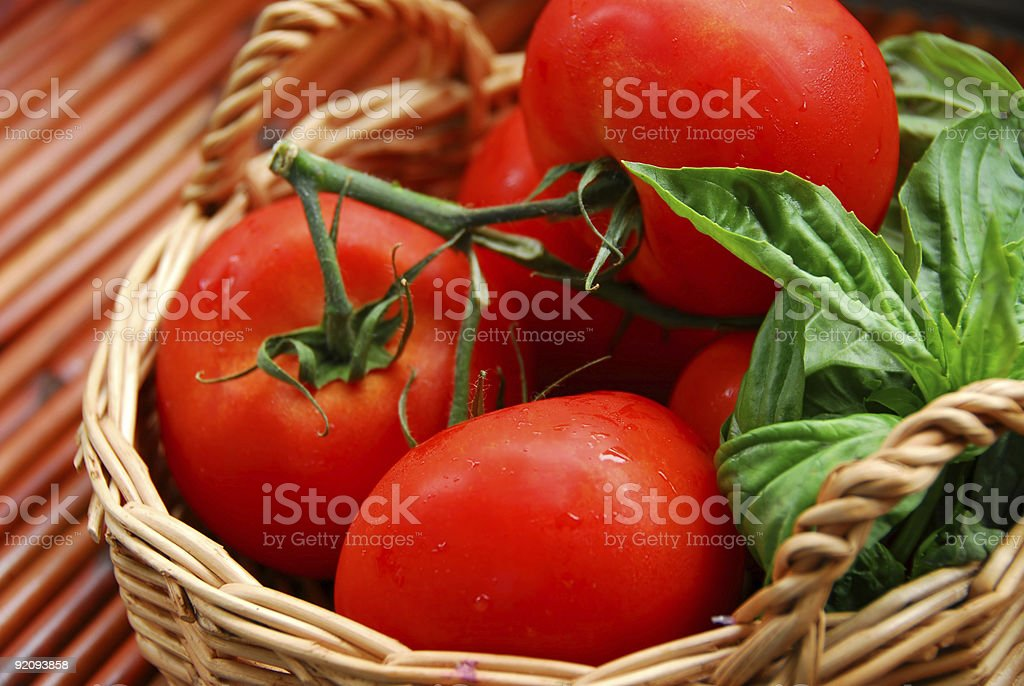 Tomatos and basil stock photo