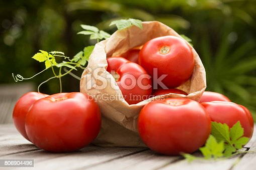 Front view photography of a pile of ripe organic red and appetizing tomatoes in paper bag on rustic wooden table, outdoors, sunlight, garden. Nature background. Country style. Horizontal composition. Artistic photo. Still life.