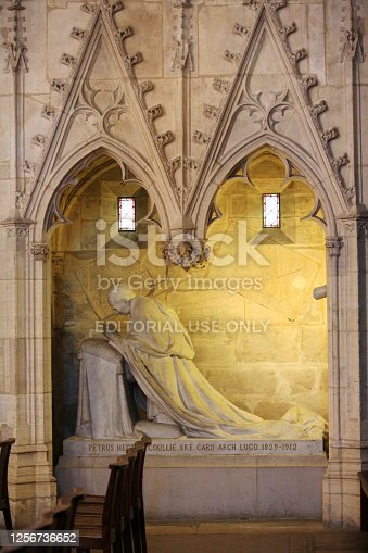 Europe. France. Auvergne-Rhône-Alpes. Rhône. Lyon. 08/02/2012. This colorful image depicts the tomb and statue of Cardinal Coullie sculpted by Castex. St. Vincent de Paul chapel. Cathedral of St. John the Baptist and St. Stephen.
