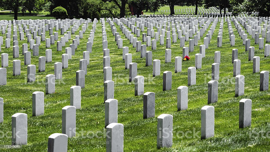 Tombstones and Flower at Arlington National Cemetery, Virginia, USA stock photo
