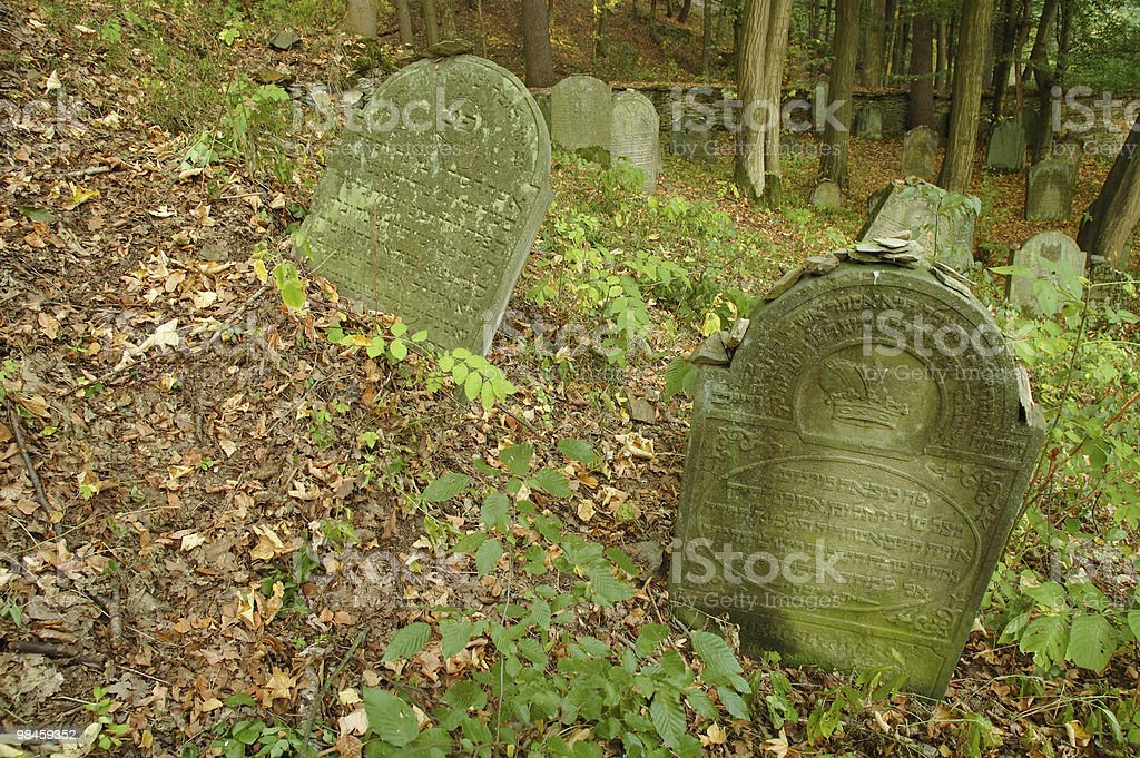 Tombstones, Autumn in closed Jewish cemetery, Czech republic royalty-free stock photo