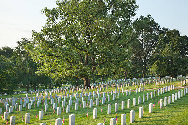 tombstones below beautiful tree in arlington national cemetery - arlington national cemetery stock pictures, royalty-free photos & images