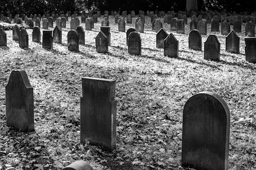 Tombstones from the First World War, black and white