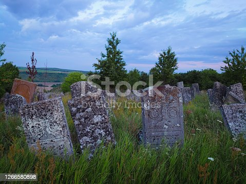Tombstones in an old abandoned Jewish cemetery overgrown with grass.