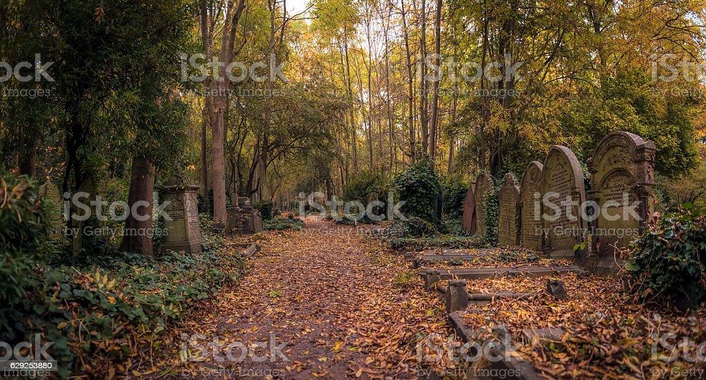 Tombstones of Highgate Cemetery, London stock photo