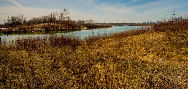 Tommy Thompson Park Is Beautiful - zdjęcia stockowe i więcej obrazów Ameryka Północna