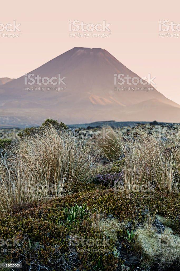 Tongariro National Park stock photo