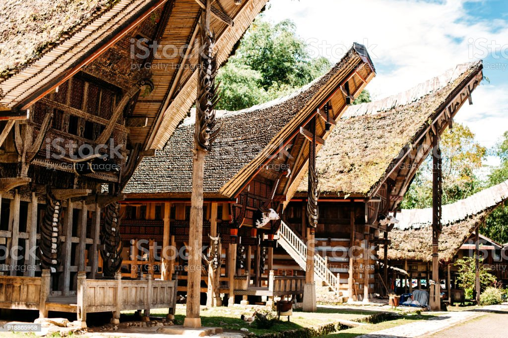 Tongkonan houses with horns of buffaloes and wood carving and paintings, traditional torajan buildings. Ethnic village Kete Kesu in Tana Toraja, Rantepao, Sulawesi, Indonesia. Wide angle stock photo