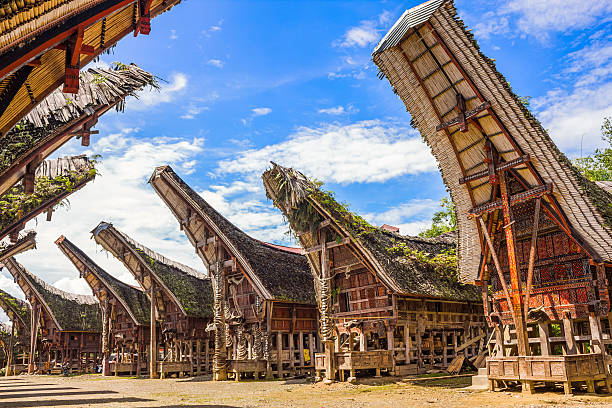 Tongkonans Torajan Ancestral Houses South Sulawesi Indonesia Photo of many Tongkonans, the traditional ancestral houses of the Torajan people, Tana Toraja Regency in South Sulawesi, Indonesia. sulawesi stock pictures, royalty-free photos & images