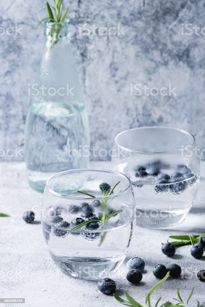 Tonic cocktail with rosemary and blueberries 免版稅 stock photo