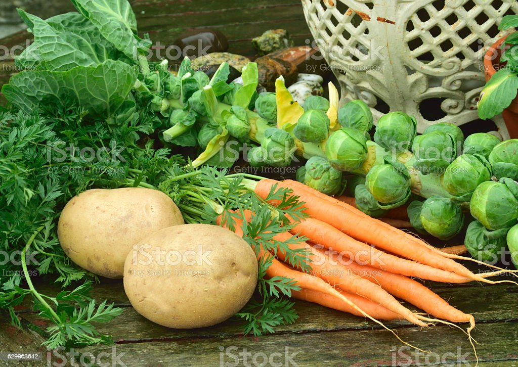 Tonight dinner, vegetables on the preparation table. stock photo
