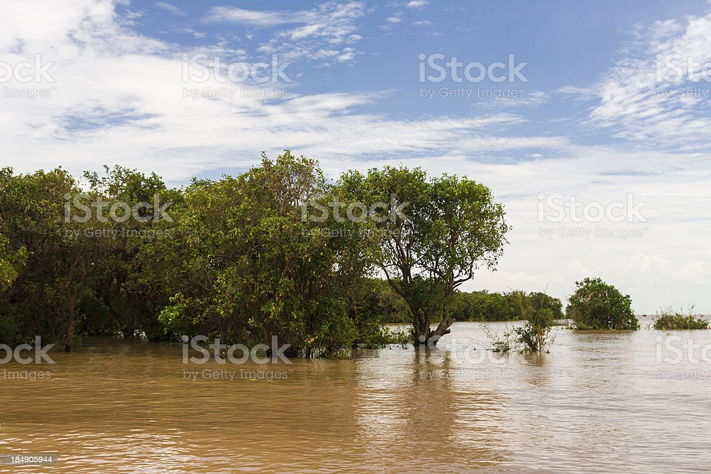 Tonle Sap lake royalty-free stock photo