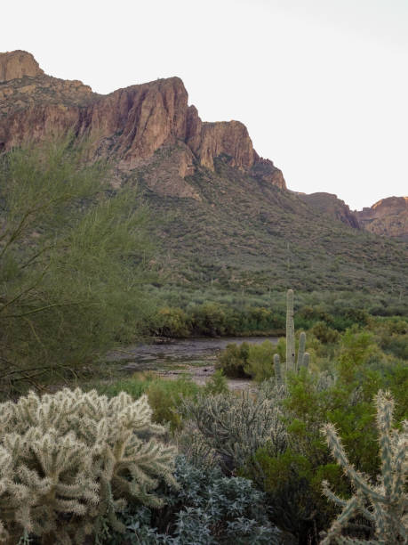 Tonto National Forest cliffs stock photo