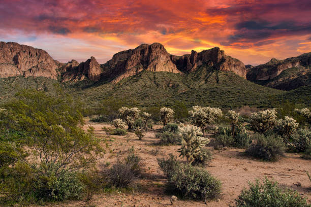 Tonto National Forest Sunset stock photo