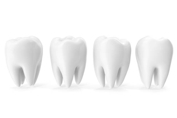 tooth 3d dental, medicine and health concept design element, 3d rendering - icon set healthy foto e immagini stock
