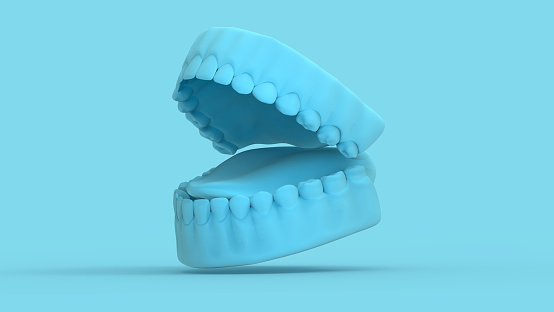 3D rendering tooth and gum open 45 degree perspective view render on pastel blue background