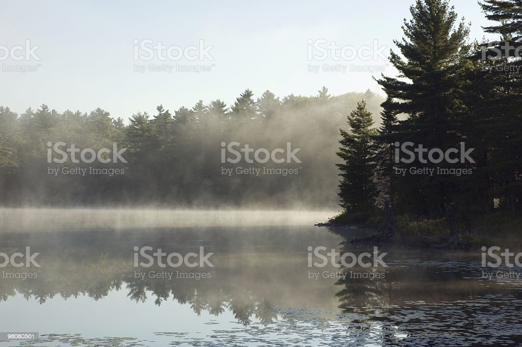 Nebbia foto stock royalty-free