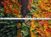 Top aerial view of suspension footbridge Geierlay (Hangeseilbrucke Geierlay) near Mosdorf, Germany
