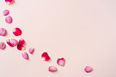 Design concept - top close up view of a lot of red rose petal pattern on pink background for mother, wedding and valentine day mockup