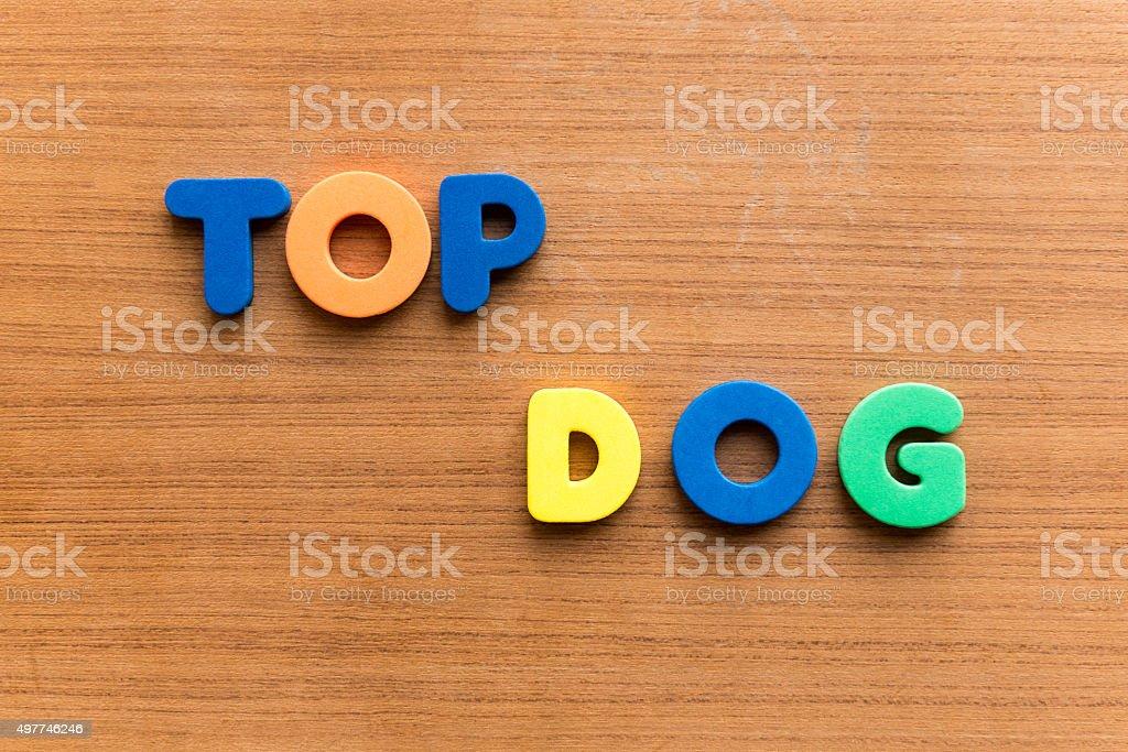 top dog stock photo