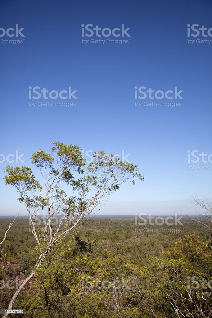 Top End Australia stock photo