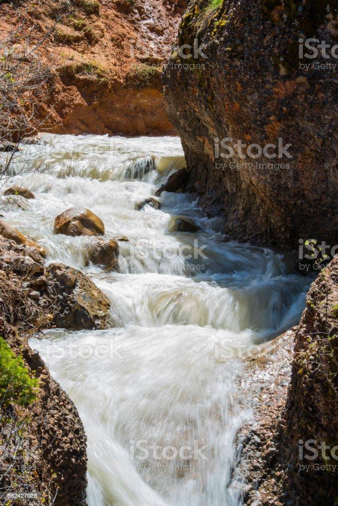 Top of Grotto Falls Lizenzfreies stock-foto