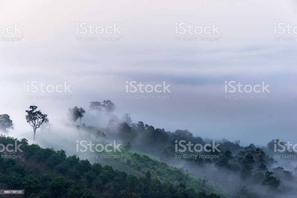 Top of hill foto de stock royalty-free