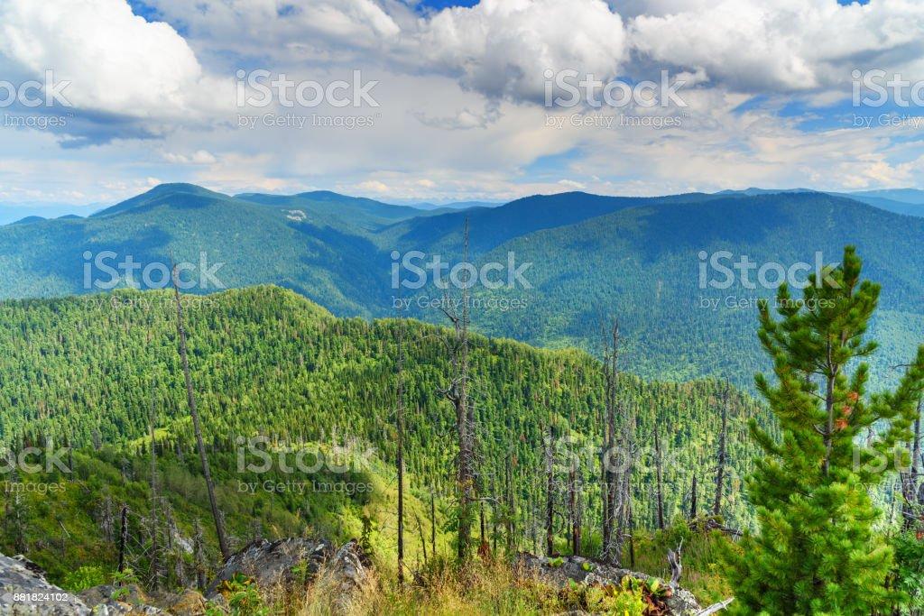 Gipfel des Berges Kokuya. Republik Altai. Russland – Foto