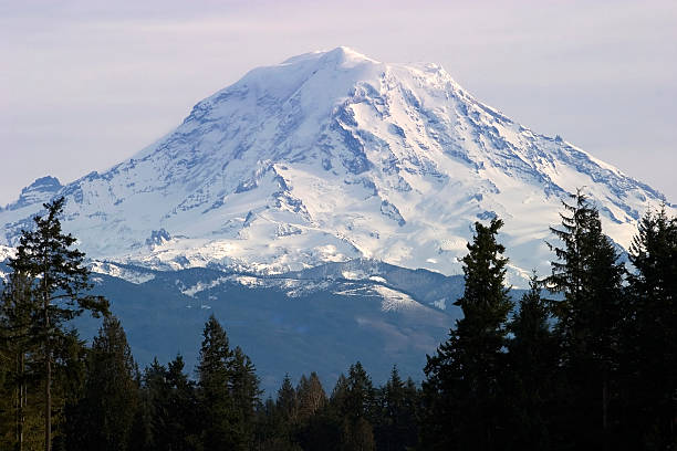 Top of Moint Rainier Gorgious view on the top of Mount Rainier tacoma stock pictures, royalty-free photos & images