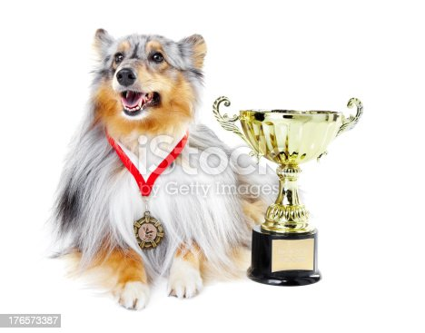 istock Top of the competition 176573387