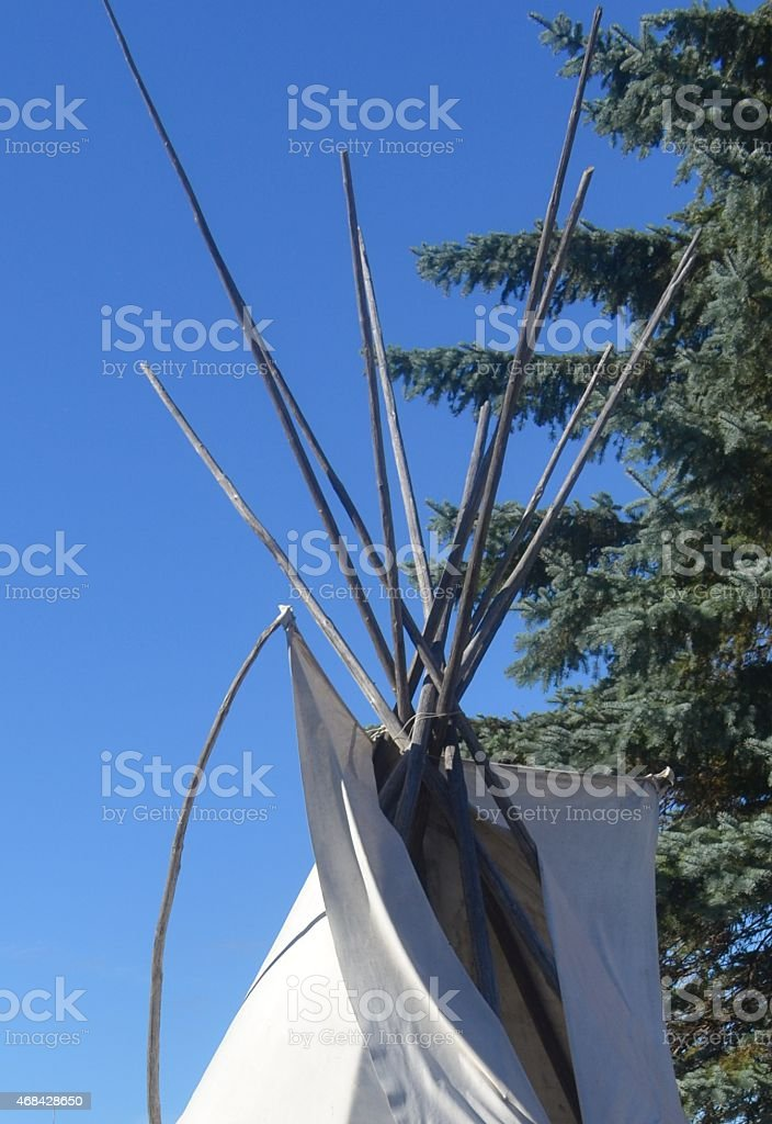 Top of the Ojibwa or Ojibwe Wigwam stock photo